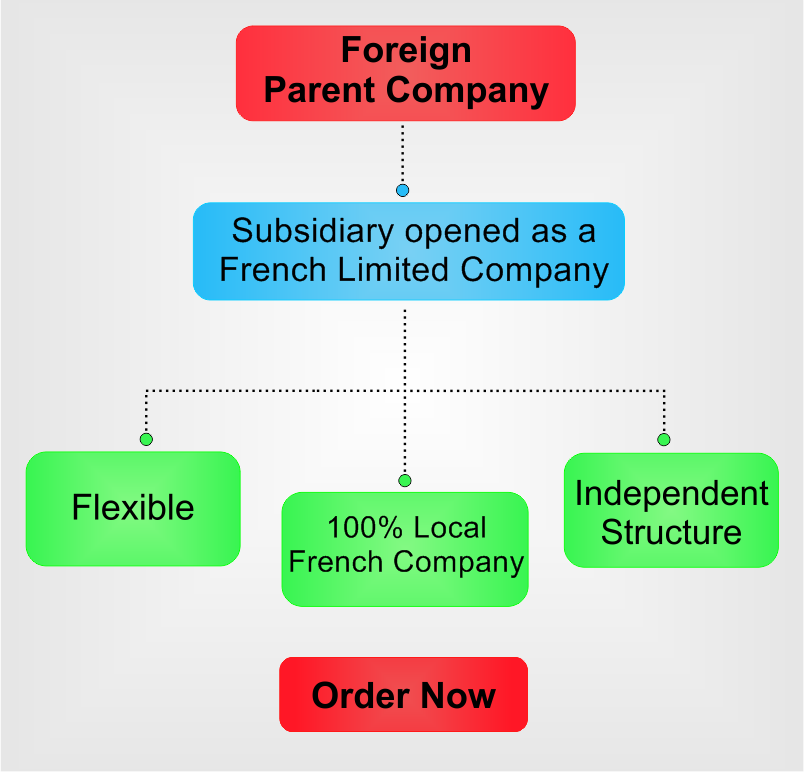 subsidiary-in-France.png